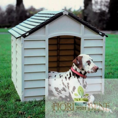 Cuccia cani PVC beige chiaro e verde
