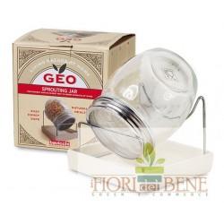 Vaso Germogliatore Geo - Bavicchi con vassoio ceramica