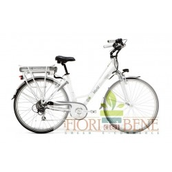 Bicicletta elettrica pedalata assistitta Green Fire World dimension