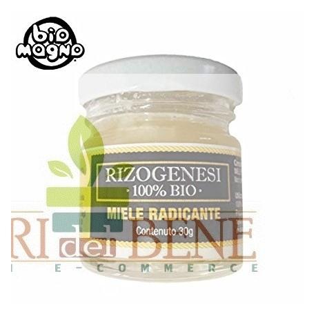 Rizogenesi 100% BIO - Miele radicante per talee Bio Magno 30 g