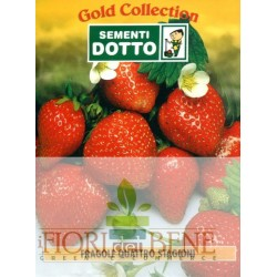 Semi di fragole rifiorenti quattro stagioni Dotto Sementi Gold Collection