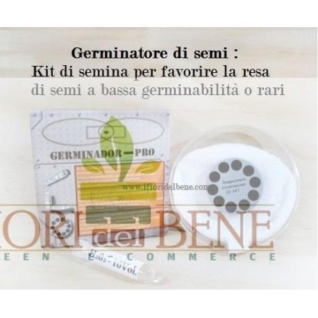 Germinatore per semi - GERMINADOR PRO