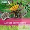 Semi di Cardo Benedetto Cnicus benedectus Sementi Dotto Linea Benessere & Sapore 2 g