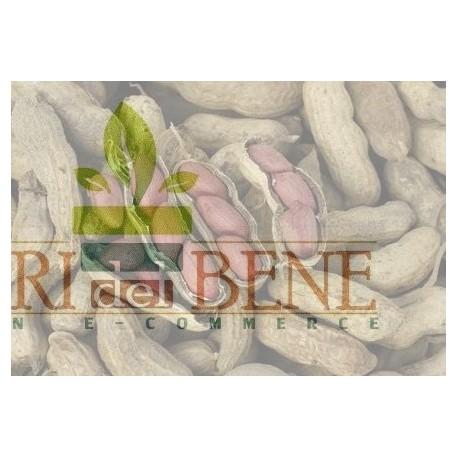 Semi di arachidi (noccioline americane)